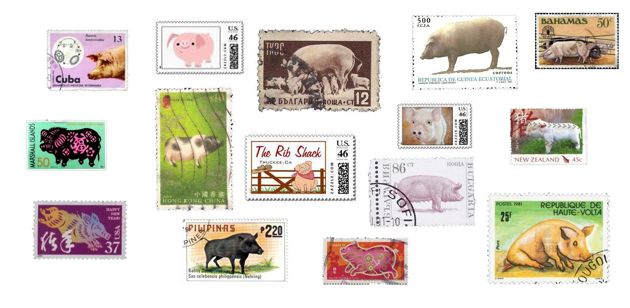 Postzegels van de wereld met een ding gemeen ... het varken