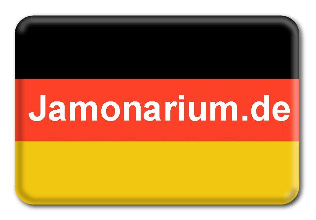 aleman-idioma